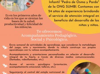 PROGRAMA DE ACOMPAÑAMIENTO FAMILIAR EN DESARROLLO INFANTIL TEMPRANO